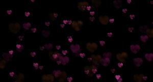Hearts_photo