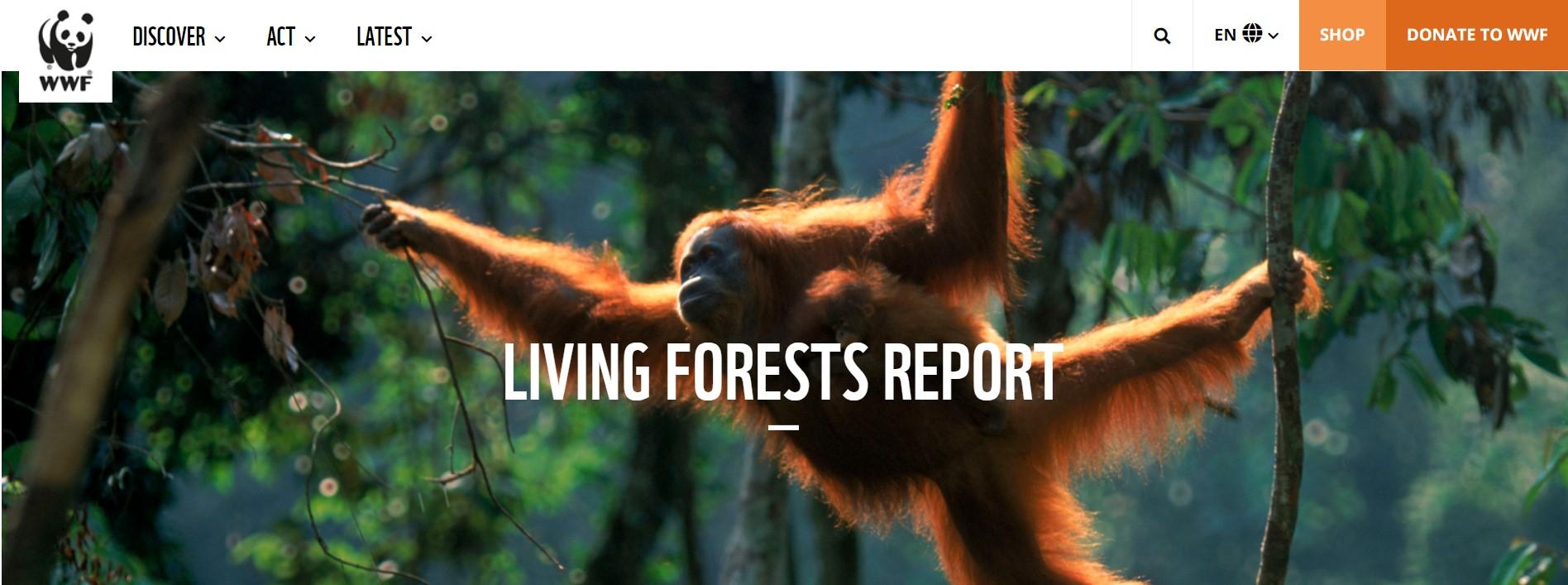 Звіт WWF